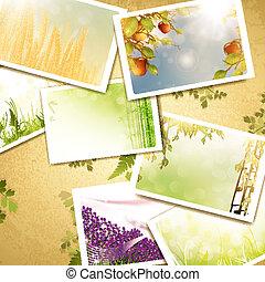 vinobraní, druh, grafické pozadí, fotit
