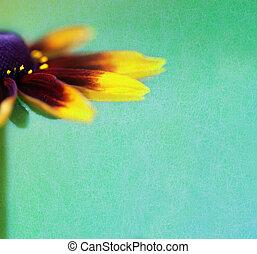 vinobraní, grafické pozadí, s, překrásný, květ