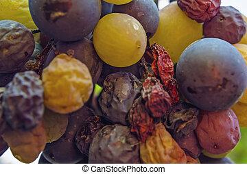 vinranka, vingård, druvor, bukett