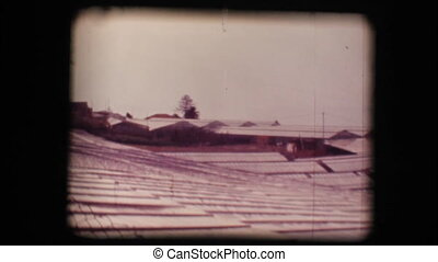 Vintage 8mm. Greenhouses