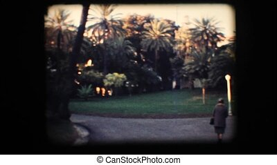 Vintage 8mm. Park with palm trees
