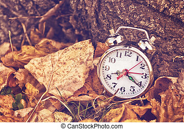 Vintage alarm clock in dry autumn leaves, Passing of time...