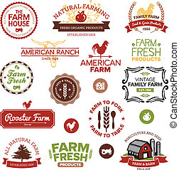 Vintage and modern farm labels - Set of vintage and modern...