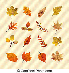 Fall season variety of tree leaves nature elements set. EPS vector file in layers for easy editing.