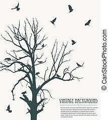 Vintage background birds