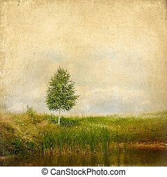 Vintage background summer landscape lonely birch on the lake with texture of paper