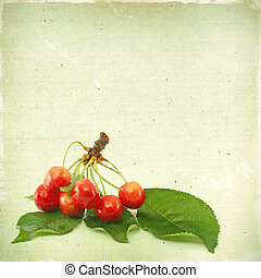 Vintage background with berries cherry texture old paper grunge, for any of your project
