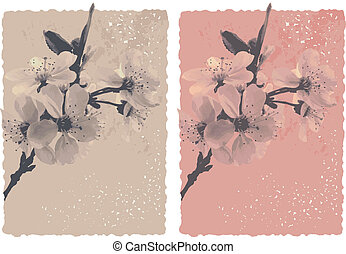 vintage background with blossom plu