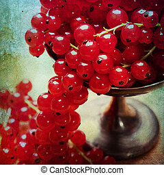 Vintage background with currants