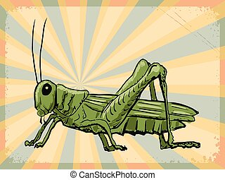 vintage background with grasshopper