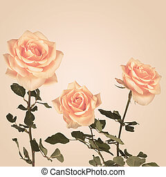 Vintage background with roses flowers. Retro backdrop
