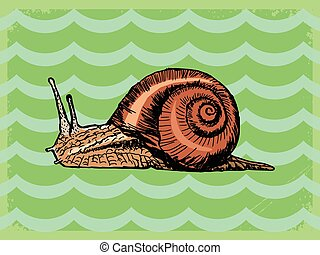 vintage background with snail