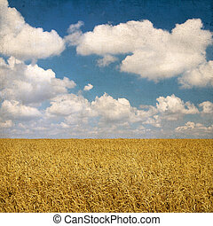 Vintage background with wheat field and cloudy sky on the background of old worn grunge paper, for your project