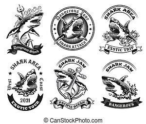 Vintage badges with dangerous shark vector illustration set