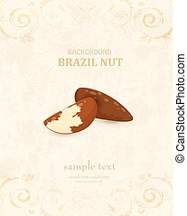 vintage banner with brazil nuts for your design