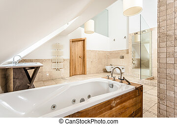 Vintage bathtub in a bathroom