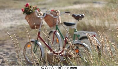 Vintage Bicycles with flowers in basket stand in a field by...