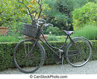vintage bike with straw basket parked on alley in tuscan garden