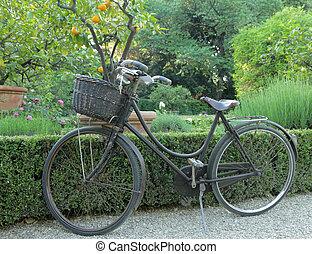 vintage bike with straw basket parked on alley in tuscan garden