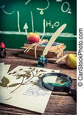 Vintage biology lesson at school