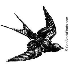 Vintage bird - Vector hand drawing sketch of a flying bird