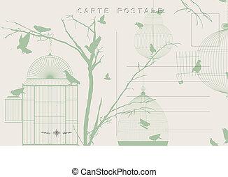 Vintage birds postcard 2