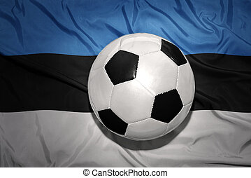 black and white football ball on the national flag of estonia