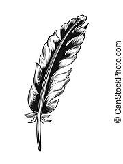 Vintage black feather.