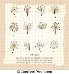 Vintage botanical poster with dandelion