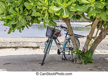 Vintage Bycicle parked on the beach