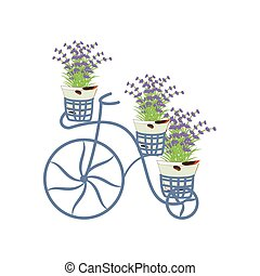 Vintage bycicle with lavender on the white background....
