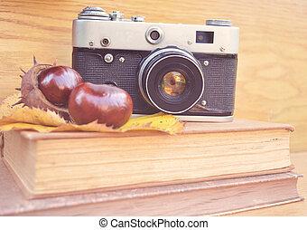 Vintage camera on book and chestnut