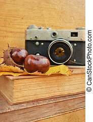 Vintage camera on book with chestnut