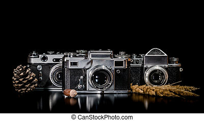 vintage cameras with a fir cone and spikelets on a black background
