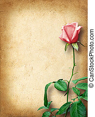 Vintage card for congratulations with pink roses