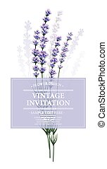 Vintage card with lavender flower. Vector illustration