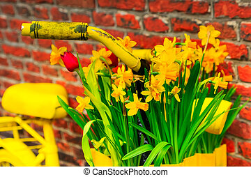 yellow bicycle with basket of daffodil flowers