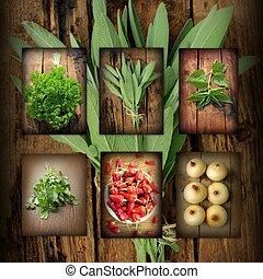 Vintage collage of fresh herbs