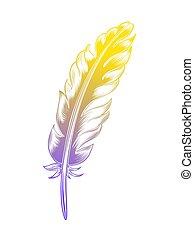 Vintage color feather.