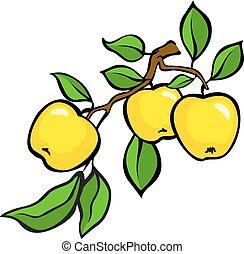 Vintage colorful apple harvest set. Fully editable EPS10 vector.