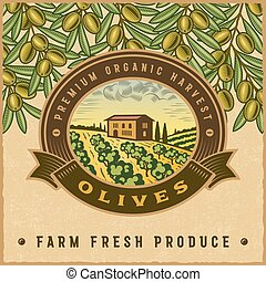 Vintage colorful olive harvest label