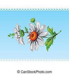 Vintage daisy flower. Vector.