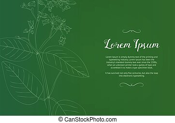 Vintage design template with a green plant