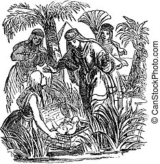 Vintage Drawing of Biblical Story about Moses as Baby Was Found and Adopted by Egyptian Princess