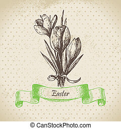 Vintage Easter background with crocus flowers. Hand drawn...