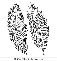 Vintage Feather vector set. Hand-drawn illustration. -...