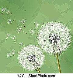 Vintage floral background with dandelion