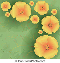 Vintage floral background with flowers poppies