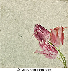Vintage floral background with tulips on the background of old grunge paper, for each of your project