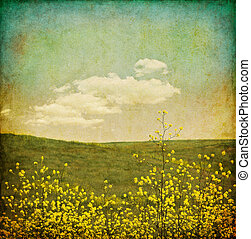 A field of black mustard plants with an aged, vintage look and grunge patterns.